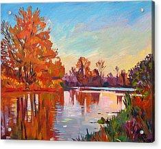 Reflected Impressions Acrylic Print by David Lloyd Glover