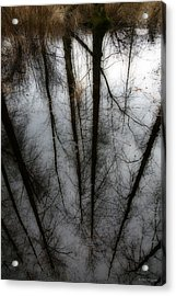 Reflecting On A Winter Day Acrylic Print by Winston Rockwell