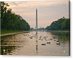 Acrylic Print featuring the photograph Reflecting Pool And Ducks by Jim Moore