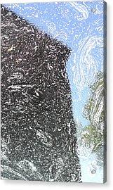 Reflection 2 Acrylic Print by Sara Walsh