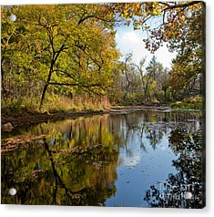Reflection In A Dreamy Pond Acrylic Print by Iris Greenwell