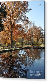 Reflection In The Water Acrylic Print by Denise Ellis