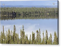 Reflection In Willow Lake Near Copper Acrylic Print by Rich Reid