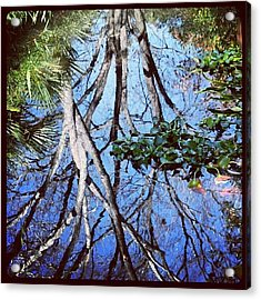 #reflection #tree #cool #popularphoto Acrylic Print