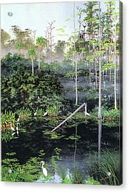 Reflections 1 Acrylic Print by Kevin Brant