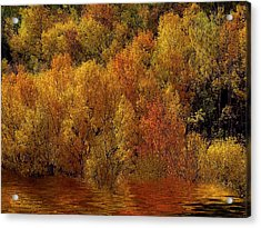 Reflections Of Autumn Acrylic Print by Carol Cavalaris