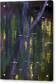Reflections Of Monet Acrylic Print by Terry Eve Tanner