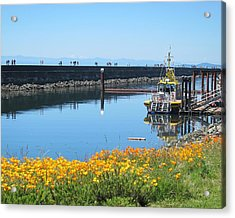 Reflections Of Ogden Point Acrylic Print