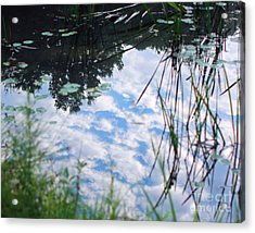 Reflections Of The Sky Acrylic Print by Smilin Eyes  Treasures