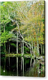 Reflections On A Fall Day Acrylic Print by Joanne Brown