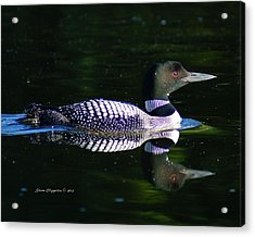 Acrylic Print featuring the photograph Reflections by Steven Clipperton