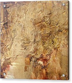 Reflective Acrylic Print by Jean LeBaron