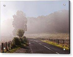 Refreshing Morning Fog In Trossachs. Scotland Acrylic Print by Jenny Rainbow