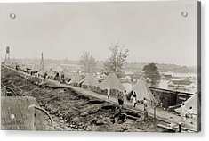 Refugees At A Tent City On The Levee Acrylic Print by Everett