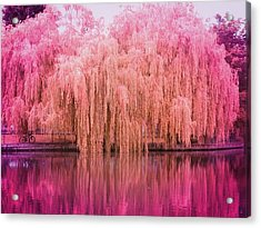 Regeant's Canal Acrylic Print by Andreia Gomes