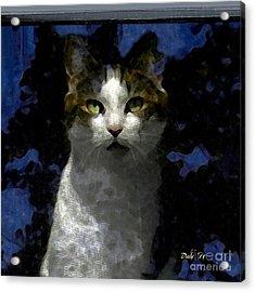 Reggie In Window 2 Acrylic Print
