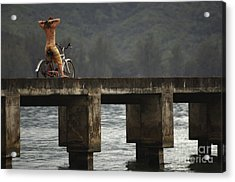 Relaxed Ride Hanalei Bay Acrylic Print by Bob Christopher