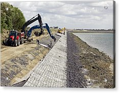 Renewing Shore Defences, Netherlands Acrylic Print by Colin Cuthbert