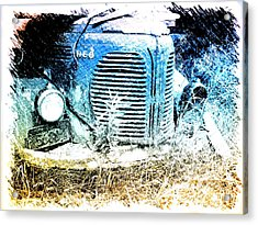 Reo Acrylic Print by Andre Faubert