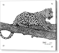 Resting Days Acrylic Print by Elizabeth Harshman