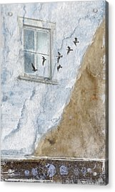Return Flight Acrylic Print by Carol Leigh