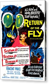 Return Of The Fly, Top Right Danielle Acrylic Print by Everett