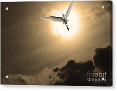 Return To Eternity . Gold Cut Acrylic Print by Wingsdomain Art and Photography