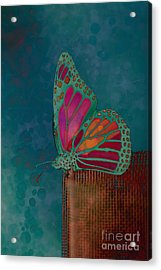 Reve De Papillon - S04bt02 Acrylic Print by Variance Collections