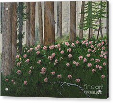 Rhododendrons And Redwoods Acrylic Print
