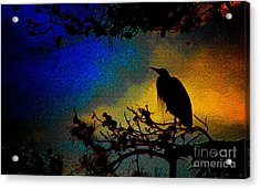 Richly Colored Night  Acrylic Print