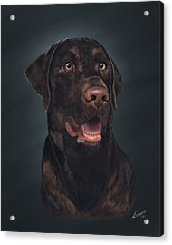 Rico Acrylic Print by Lisa Binion