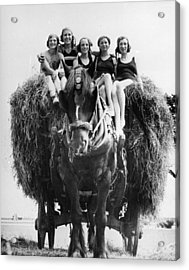 Ride On A Hay Cart Acrylic Print by Fox Photos