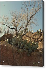 Acrylic Print featuring the photograph Ridgeline by Louis Nugent