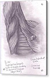 Right Axilla Acrylic Print by Cecelia Taylor-Hunt