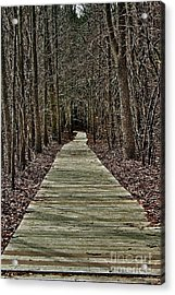 Right Path Acrylic Print by Gregory Dragan