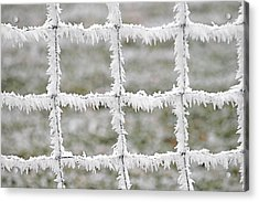 Rime Covered Fence Acrylic Print