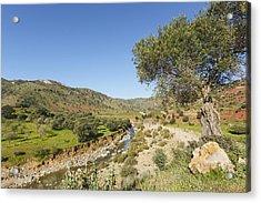 Rio De Cauche, Malaga Province, Spain. Acrylic Print by Ken Welsh