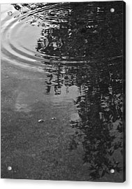 Acrylic Print featuring the photograph Rippled Tree by Kume Bryant
