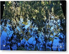Ripples And Reflections Acrylic Print by Kaye Menner