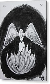 Acrylic Print featuring the drawing Rising From The Flames by Serene Maisey