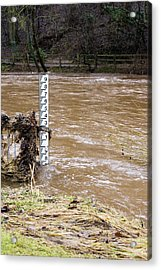 Rising River Level Acrylic Print by Mark Williamson