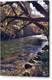 Acrylic Print featuring the photograph Rivee View by Janice Spivey