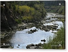River At The Golf Course Laguna Acrylic Print by Nelly Marziale