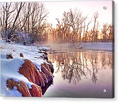 Acrylic Print featuring the photograph River Grasses Colorado by William Fields