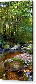 River In Cawdor Big Wood Acrylic Print