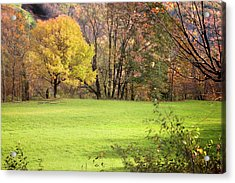 Acrylic Print featuring the photograph River Road Field by Tom Singleton