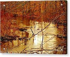 River Russel Acrylic Print by Lisa  Ridgeway