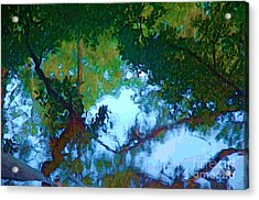 Riverbank Reflections2 Acrylic Print