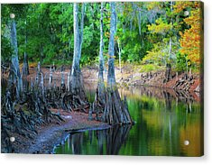 Riverside Acrylic Print by Bill Barber