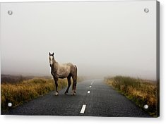 Road Acrylic Print by Deirdre Marie Photography
